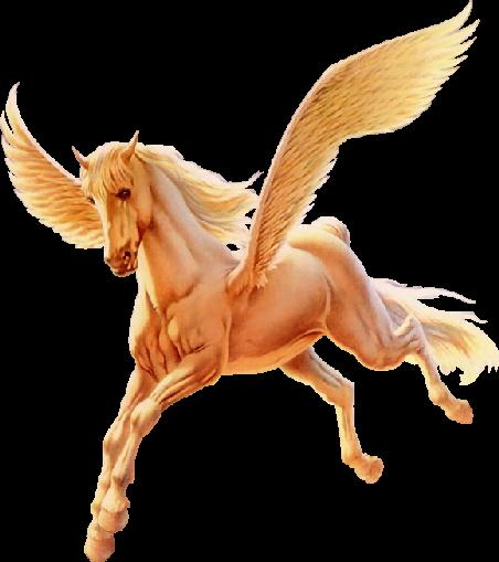 Capricci animati raccolta immagini cavalli e animali for Disegni cavalli alati