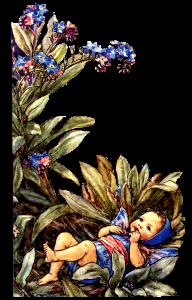 elfetto-fiore-1-1.png