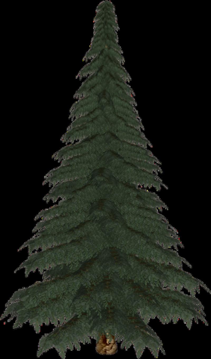 Natale alberi for Foto di alberi da colorare